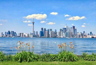 Gap year Toronto